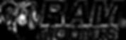 ram-mounts-logo-1.png