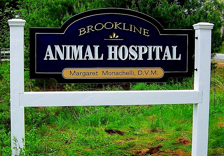 Veterinarian hand painted Brookline,