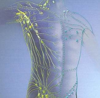 lymph-drainage-therapy.jpg