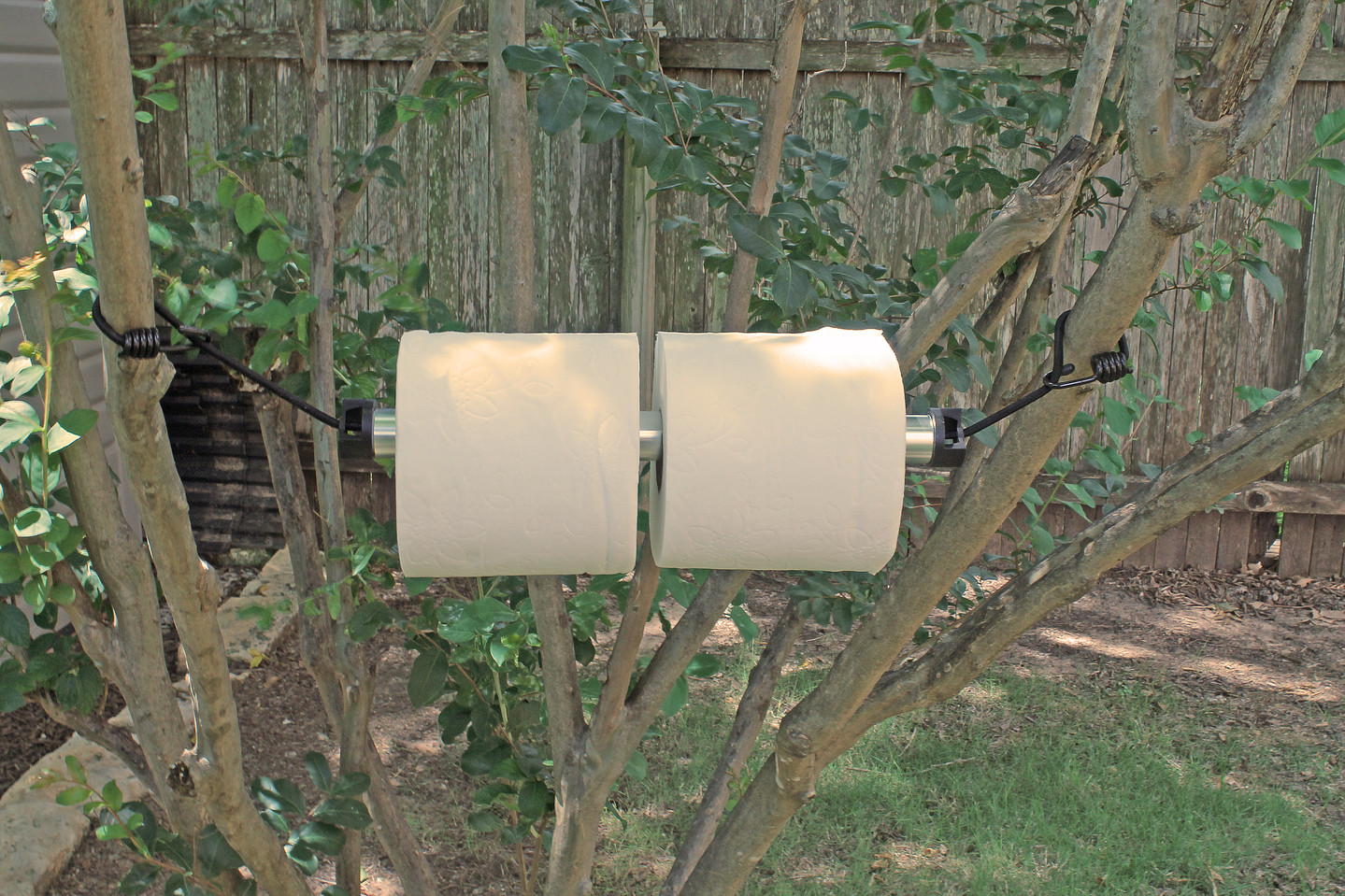 Toilet Paper_horizontal.JPG