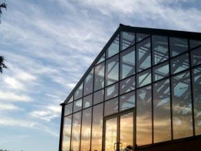 NESTING YOUR GLASS BOX – THE LATE-TWENTIES CRISIS