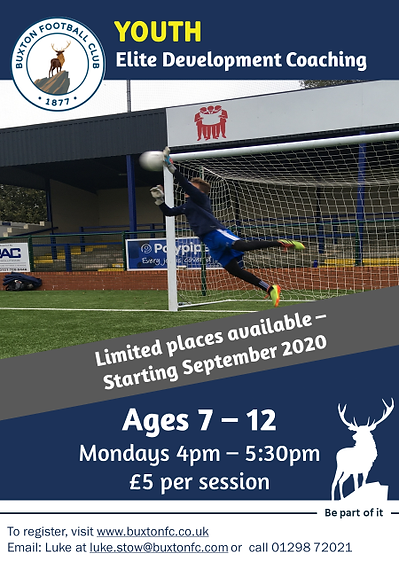 Youth Elite Development Poster.png