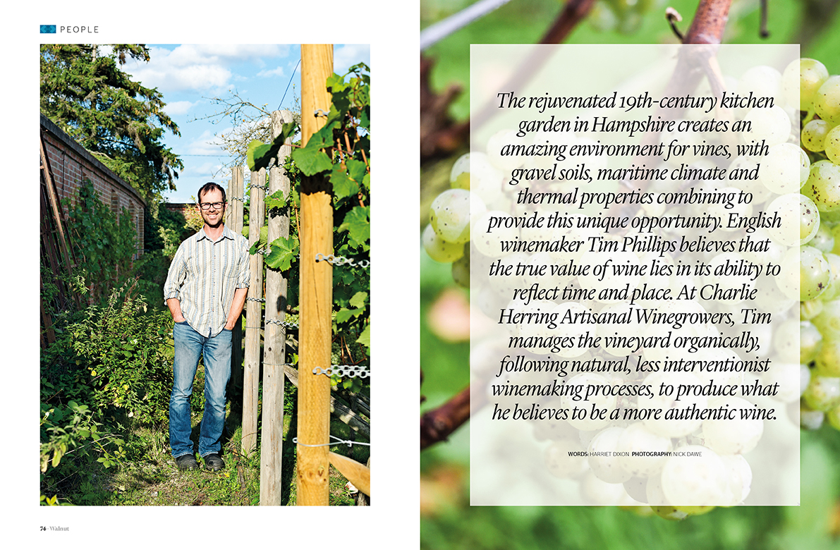 Artisanal winegrowers interview
