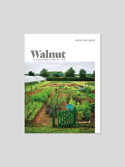 Issue 1 – Digital download