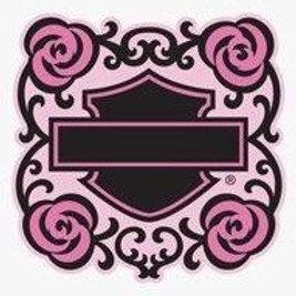 H-D Pink