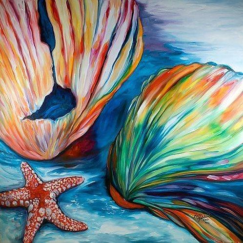 Colorful Shells