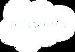 Salesforce_Logo_white.png