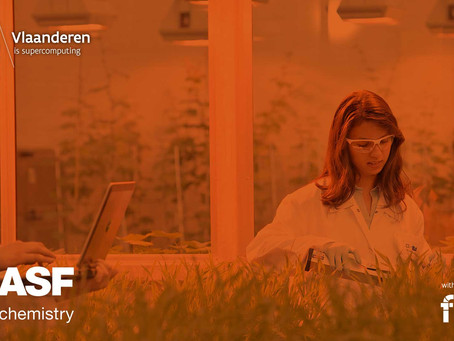 How BASF is using Deep learning to create the wheat of the future