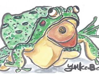 "YUKABON 5minutes drawing ""yukabon's correction FROG"""