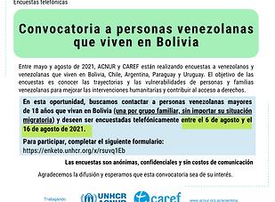 Encuesta Bolivia.png