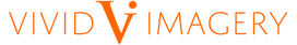 VI Logo Horizontal.png