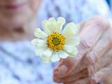 Spring Brings New Hope