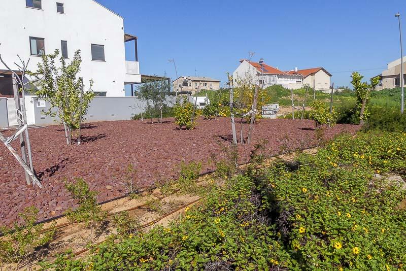 טוף בתפזורת לכיסוי שטח גדול בגינה