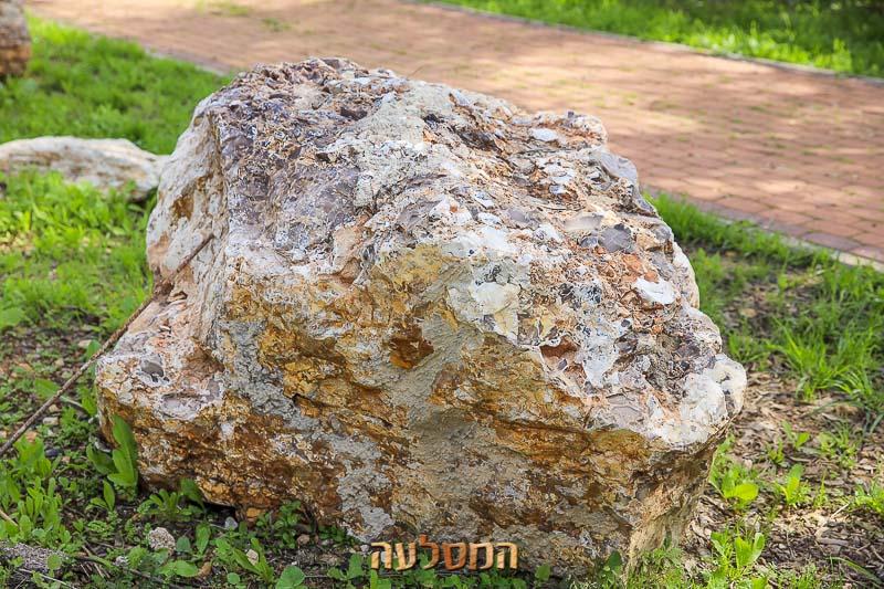 סלעים גדולים
