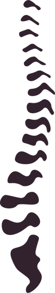 Nadav Logo Spine high res.png