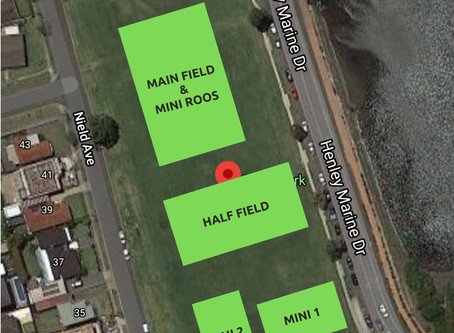 Field Layout Nield Park