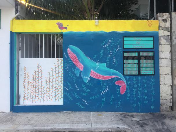 5ta Avenida, Playa del Carmen, Quintana Roo