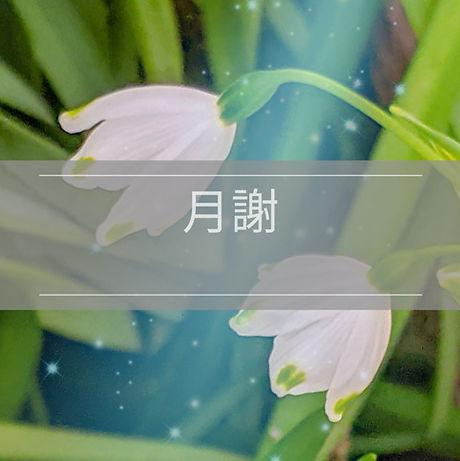 PSX_20200323_222109.jpg
