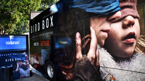 Netflix Bird Box Experience