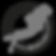 bandeirantes_do_mar_logo_AF_01-02.png