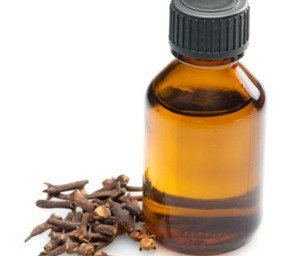 """""""Oil of Cloves"""" to remove mould"""