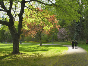 Exercise – It's just a walk in the park!