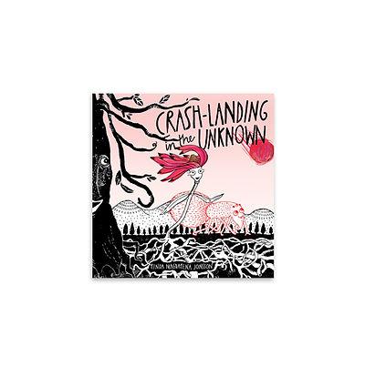 book-Crash-landing-in-the-unknown_-Linda