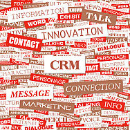 CRM Systems: A Business Strategy Perspective