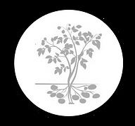 Potato Plant Silhouette round.png