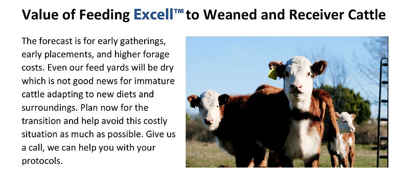Excell™ Technical Brief - Weaning 2021 -page-001.jpg