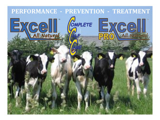 Dairy Management, Inc., Showcasing the Resilience of the U.S. Dairy Industry