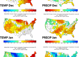 Weather, Cattle and Markets - What To Expect