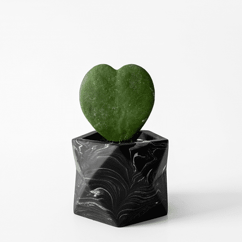 Palua Planter medium Ø 5,5 cm 'House Raccoon' - Black Marble
