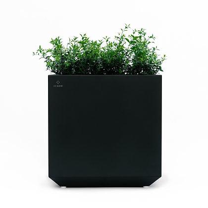 Planter 'Ferdu' - Anna Black