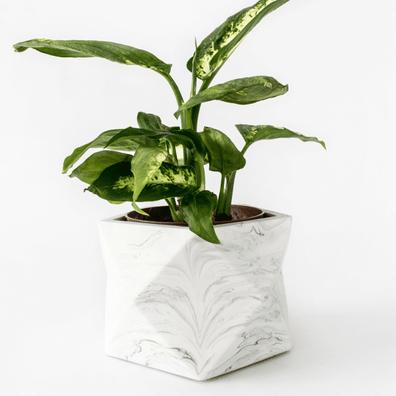 Palua-large_white-marble_plant2-596x774.