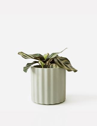 Mila Planter / Tealight holder Ø 6 cm 'House Raccoon' - Olive Green
