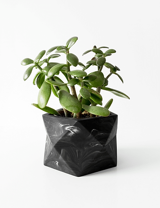 Palua Planter large Ø 8,5 cm 'House Raccoon' - Black Marble