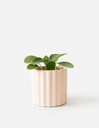 Mila Planter / Tealight Holder Ø 6 cm 'House Raccoon' - Millennial Pink