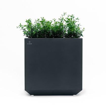 Planter 'Ferdu' - Anna Anthracite