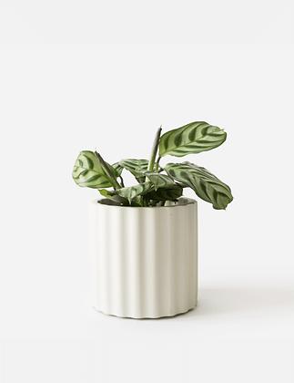 Mila Planter / Tealight Holder Ø 6 cm 'House Raccoon' - Silver Green