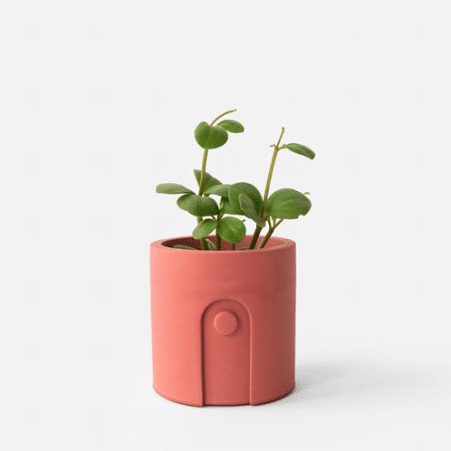 Emilia Planter / Tealight Holder Ø 6 cm 'House Raccoon' - Pomegranate