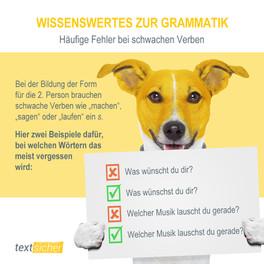 Tipp aus dem Korrektorat (Grammatik)