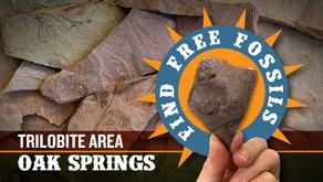 Oak Springs Trilobite Area | Fossil Hunting Guide