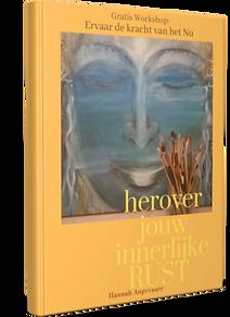 BOOK3DCOVER SINT 101KB HANNAH ANGEVAARE