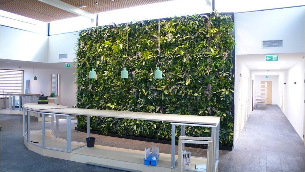 Greendelight | verticale tuin binnen