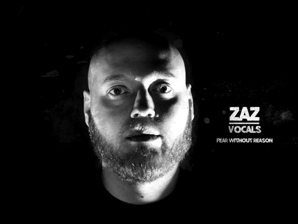 Fear Without Reason -  Zaz