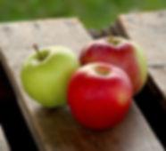 Fletcher Fruit Farms Apple