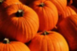 Fletcher Fruit Farms Pumpkin