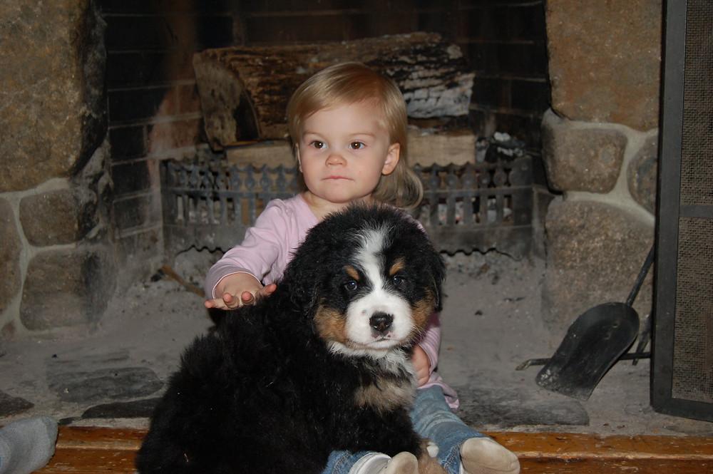 Puppies 8 weeks7.jpg