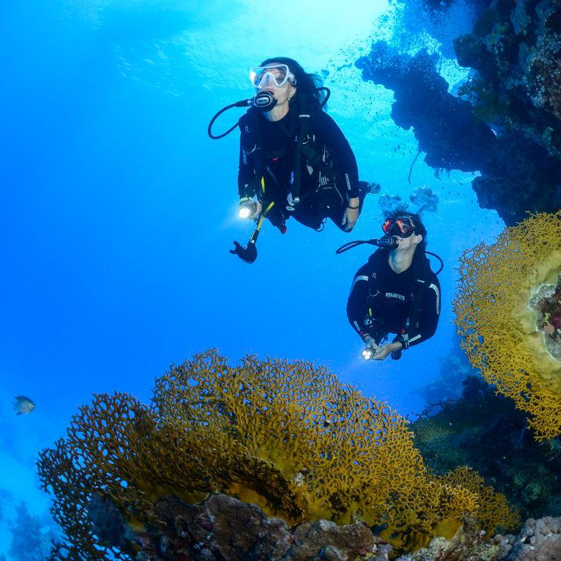 Open Water Diver - Starttermin
